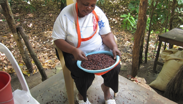 Process of our Organic Chocolate