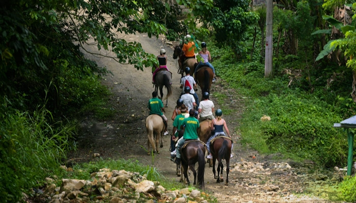 Riding horses on the trail